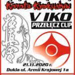 Międzynarodowy Turniej Karate Kyokushin, 21.11.2020